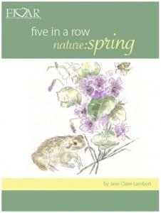 Nature Studies - Spring
